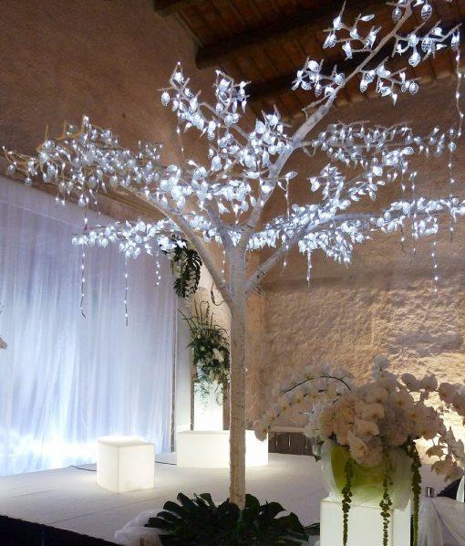 arbre-fichus-lumineux