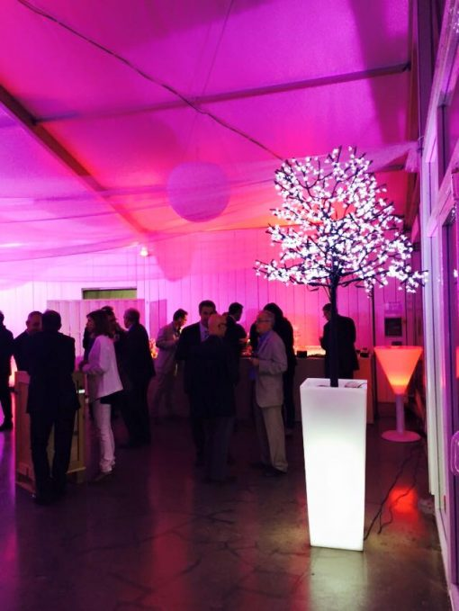 Pink Event Arbre Lumineux Pot